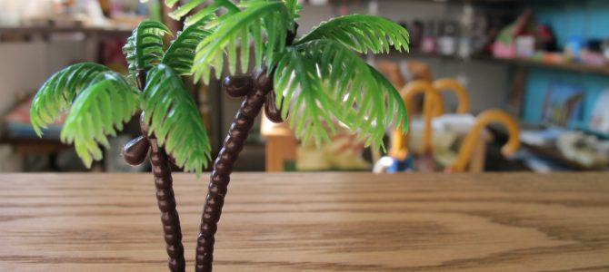ヤシの木で遊ぶ(*'∀')