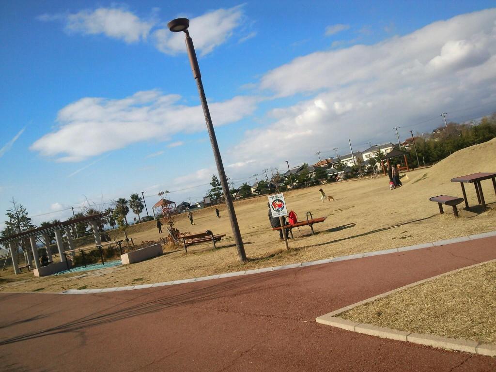 海の見える公園です。