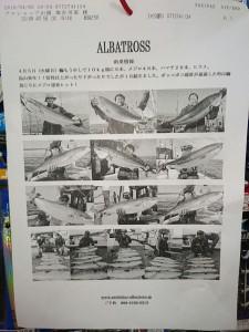 日本海青物ジギング、絶好調です!!